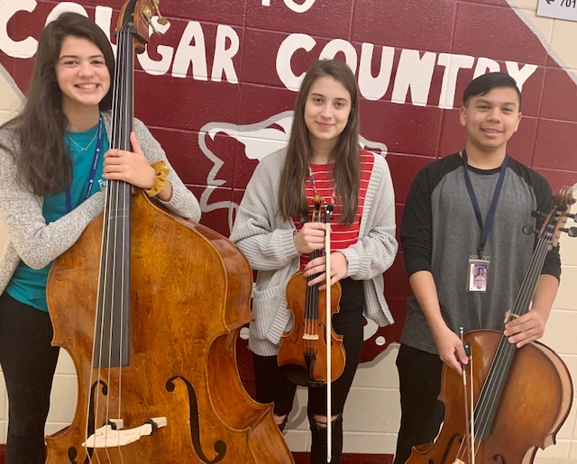 Orchestra Students Show Off Their Skills