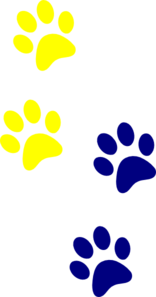 Blue/Yellow Paws 2